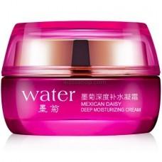 Крем для лица с экстрактом хризантемы Bioaqua Water Cream 50мл