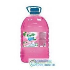 Средство для мытья посуды Колибри Лесная ягода 5л