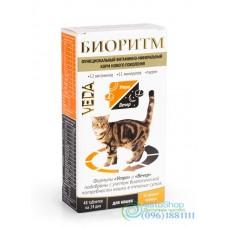Витаминно-минеральный комплекс Биоритм для кошек Веда 48 таблеток