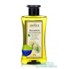 Шампунь для окрашенных волос Melica Organic с УФ-фильтрами и экстрактом оливок 300мл